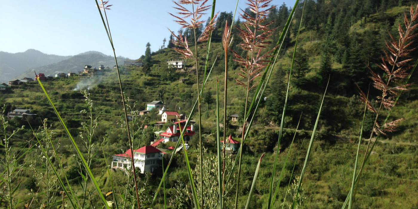 5 farmstays in Himachal Pradesh to enjoy nature and good food