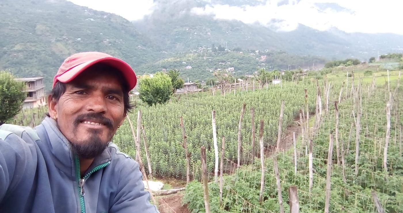 RT Local: Hear from a farmer who runs a homestay in Himachal Pradesh's Kullu