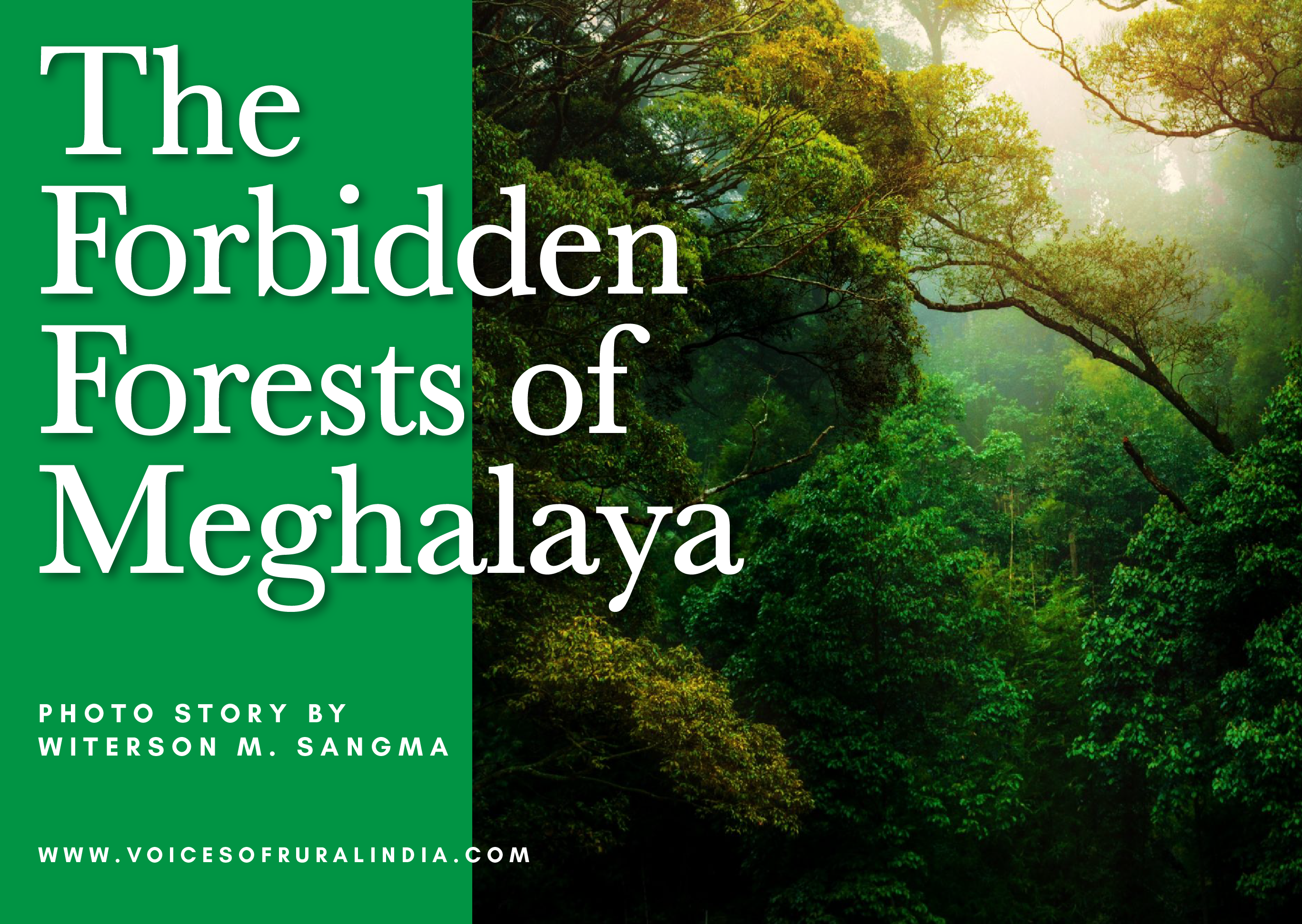 The Forbidden Forests of Meghalaya